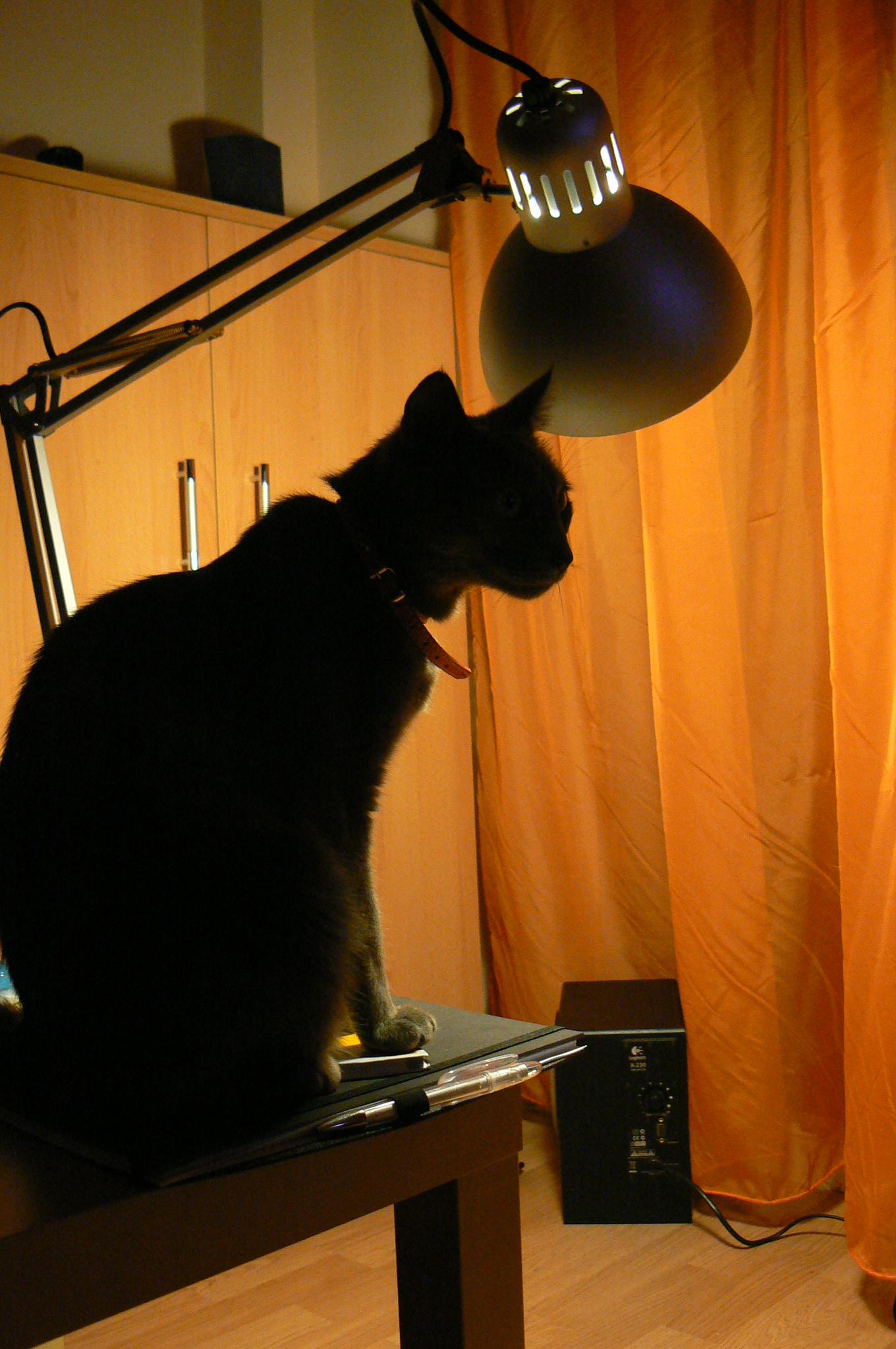kirb-cu-lampa