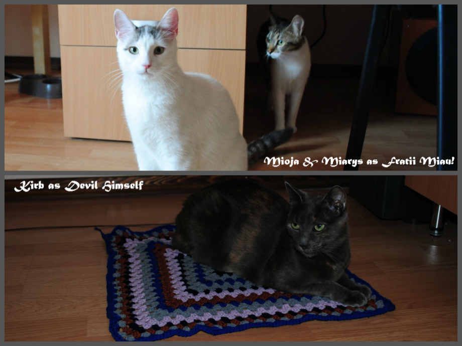 Fratii-Miau-Kirb