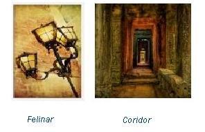 felinar-vs-coridor