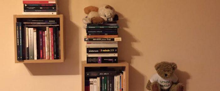 Leapșa: cărți contemporane românești